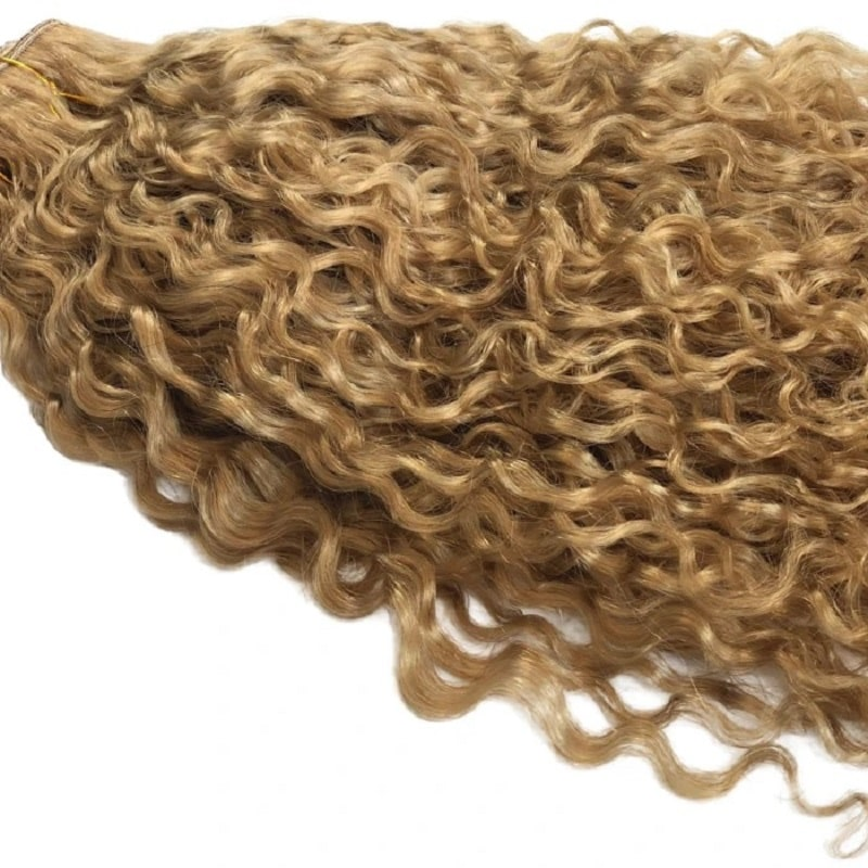 Curly Chip In Hair Extensions