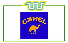 CAMEL Partner