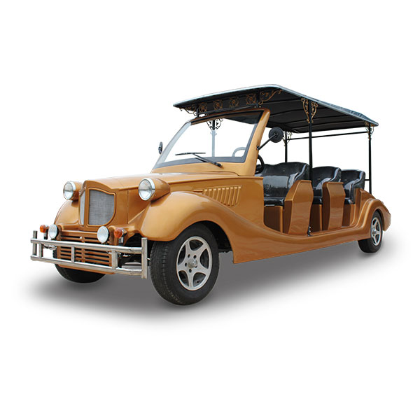 electric classic sightseeing car
