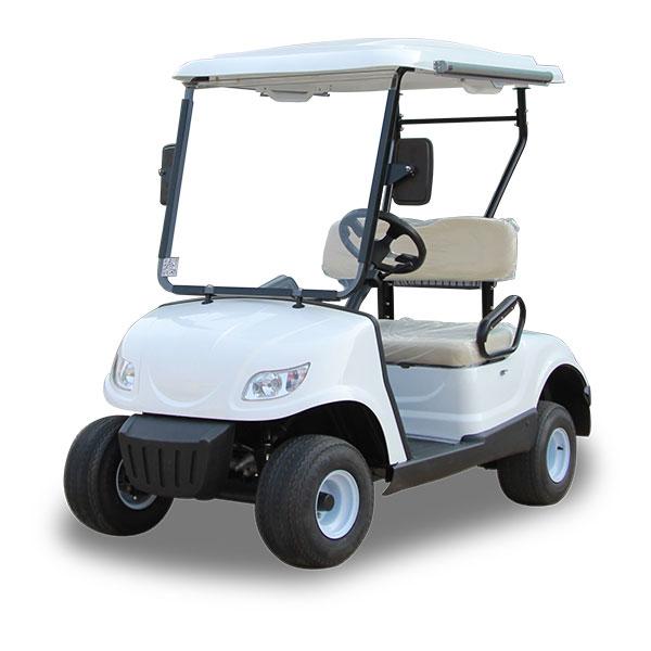 mini electric golf cart with 2 seats