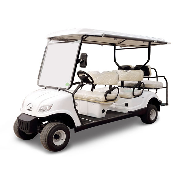 hotel electric car