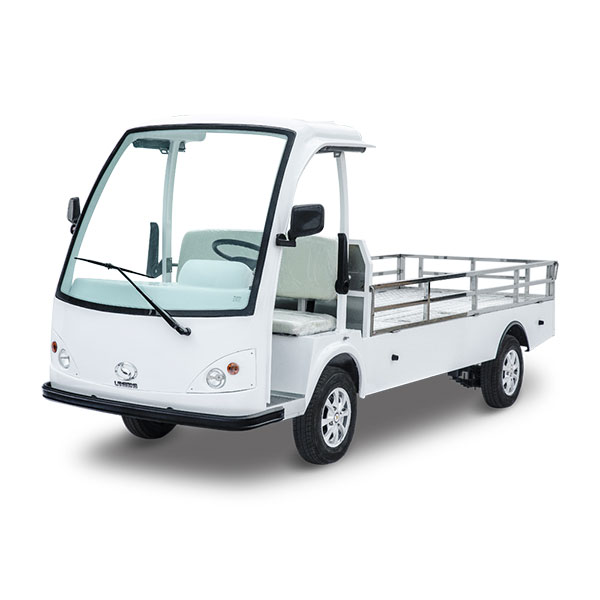 small electric pickup truck